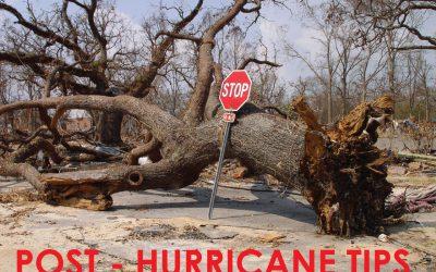 5 Hurricane Relief Tips